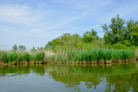 Scenic view of idyllic calm lake with breakwater