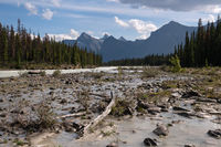 Athabasca River, Jasper National Park, Rocky Mountains, Alberta, Canada