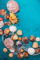 Summer beach background frame