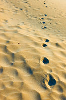 Footprints in dry sand