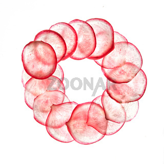 Round frame from transparent slices of freshly picked and cut natural organic radish.