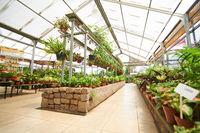 Halle mit Pflanzen im Gartencenter
