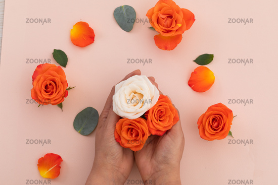 Person holding white and orange roses and orange roses on pink background