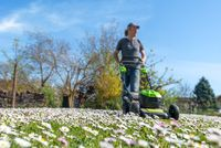 Meadow with daisies against a blue sky with blurred man, lawn mower and background