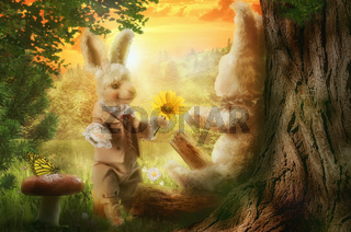 hare stories