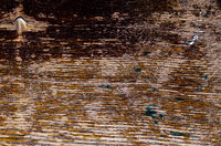 worn-out wooden surface