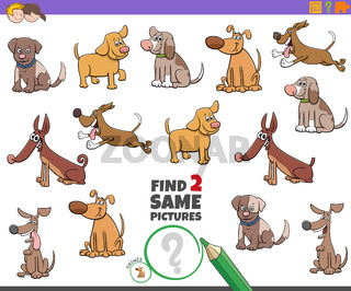find two same dogs task for children