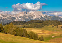Seiser Alm, Alpe di Siusi, South Tyrol with a view to Odle mountains