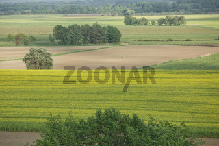 Beautiful countryside landscape with fields and small river near Kiel - Schleswig-Holstein - Germany