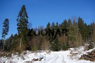 winter im sauerland.jpg