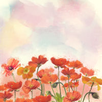 Red Poppy Flowers watercolor illustration.