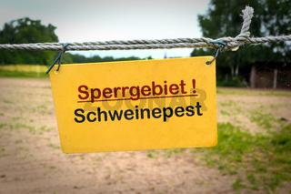 Schild mit der Aufschrift 'Sperrgebiet Schweinepest'