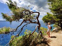 Young active feamle tourist wearing small backpack walking on coastal path among pine trees looking for remote cove to swim alone in peace on seaside in Croatia. Travel and adventure concept