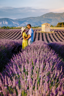 Couple men and woman on vacation at the provence lavender fields, Provence, Lavender field France, Valensole Plateau, colorful field of Lavender Valensole Plateau, Provence, Southern France. Lavender field