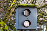 Close-up of old speed measuring device with moss on the roof