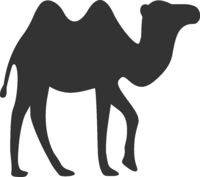 Vector Flat Camel Icon