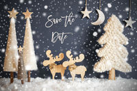 Christmas Tree, Moose, Moon, Stars, Snow, Text Save The Date, Snowflakes