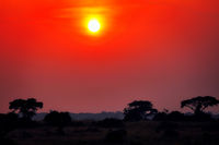 Sunrise at Murchison Falls National Park Uganda