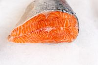 Fresh salmon steak on ice