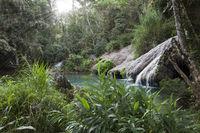 The river in park Soroa. Cuba.