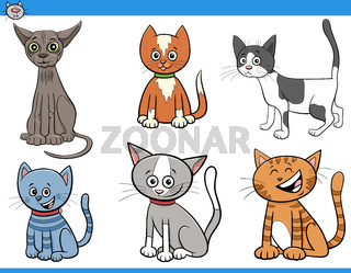 cartoon cats and kittens comic characters set