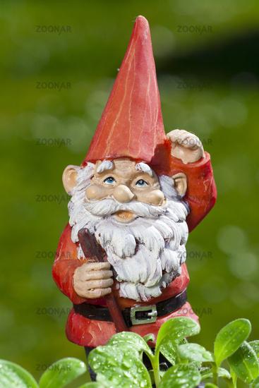 Funny little garden gnome in the garden
