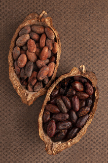 Peeled and unpeeled cocoa beans in a pod on brown background.