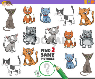 find two same cats game for kids