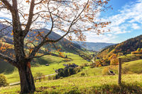 the Black Forest community of Münstertal in autumn
