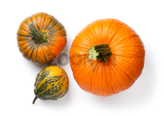 Fresh Pumpkins Isolated Over White Background
