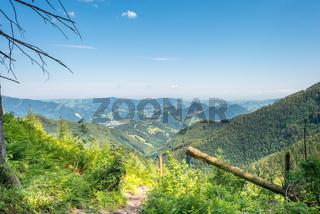 Wanderung zum Almkogel ein Berg im Ennstal in Großraming, Oberösterreich