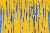 Blue stalks of grass or cane on an orange background. Creative background with phantom blue.