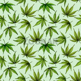 Seamless pattern of green cannabis leaves on a green background. Green hemp leaves. Hand drawn illustration.The seamless cannabis leaf pattern.marijuana pattern