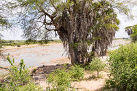 Galana River, Tsavo East National Park