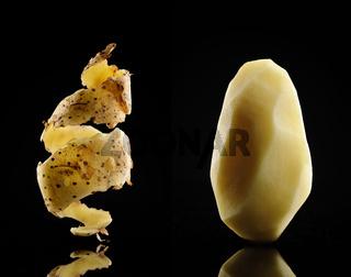 Kartoffel mit Schale.jpg