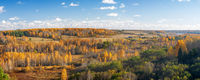 Panorama of beautiful autumn forest