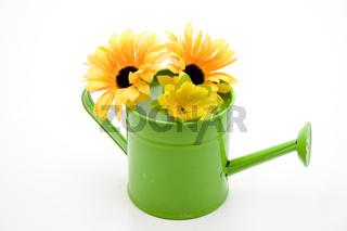 Gießkanne mit Sonnenblume