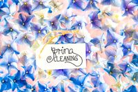 Label With Calligraphy Spring Cleaning, Hydrangea Flower Blossom