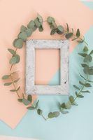 Rustic wooden frame surrounded by green leaves on blue and orange
