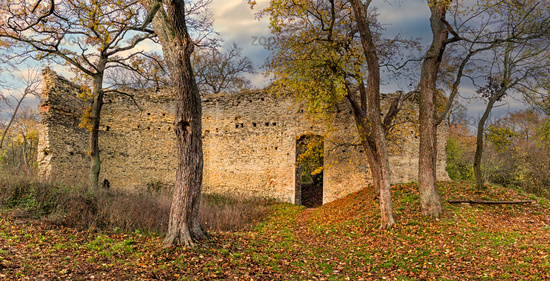 Domburg castle ruins in the Hakel