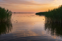 Dnipro river summer sunset twilight landscape, Ukraine