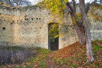 Burgruine Domburg im Hakel