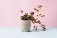 Dry flowers minimal arrangement in concrete pot. Diy home hobby