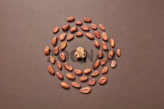 Round frame from organic cacao beans and cocoa mass.