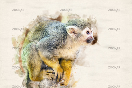 Watercolor Squirrel Monkey