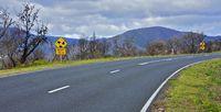 Road fire area, Australia