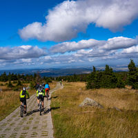 on the mountain bike on the brocken