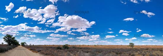 Landscape at Kgalagadi Transfrontier National Park, South Africa | Landscape at Kgalagadi Transfrontier National Park, South Africa