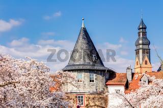 Das Türmchen in Hofheim am Taunus zum Frühlingsanfang