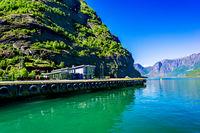 Sognefjord coast